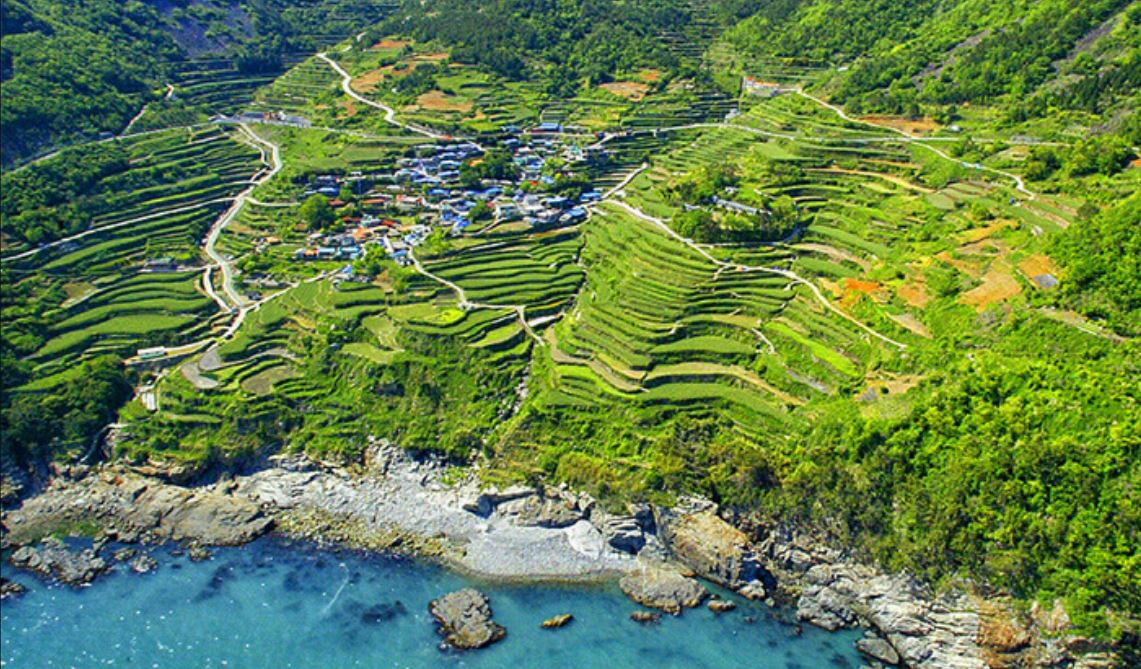 menjelajah-desa-satu-satunya-di-korea-yang-mirip-sawah-indonesia-salam-korea